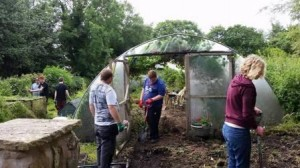 Tenbury garden project 1